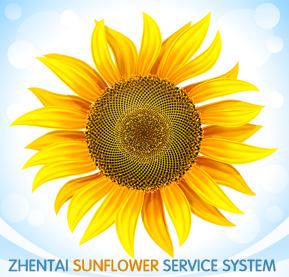 振泰机械向日葵服务体系